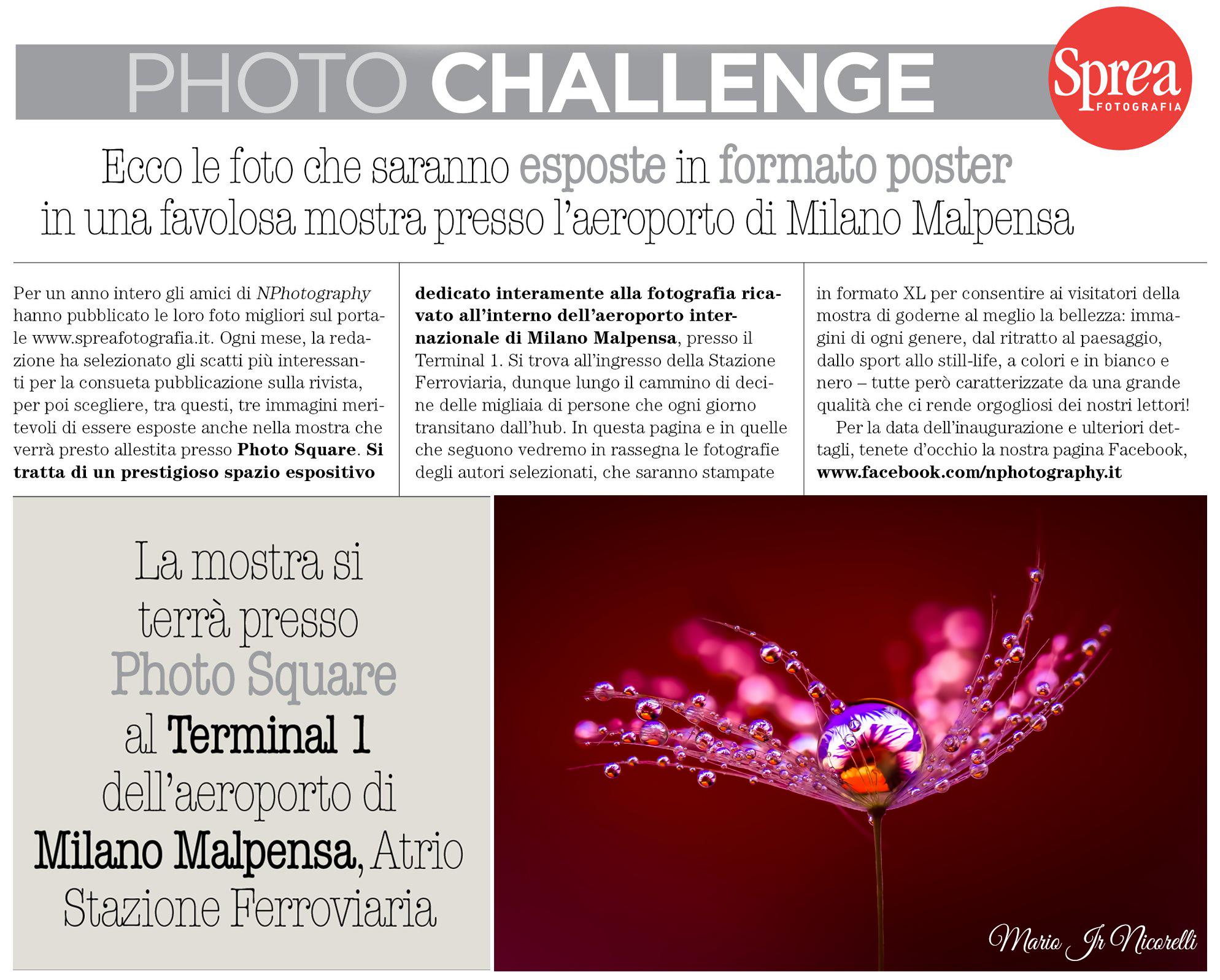 La mia macrofotografia in mostra a Milano Malpensa